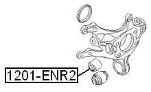 Сайлентблок AKITAKA 1201-ENR2 (задней цапфы передний) HYUNDAI